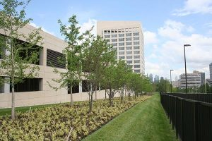 landscaping near Federal Reserve Bank