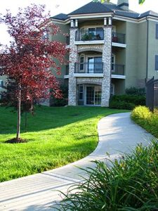tree and grass in apartment complex
