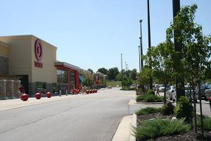 trees and bushes in Target store parking lot