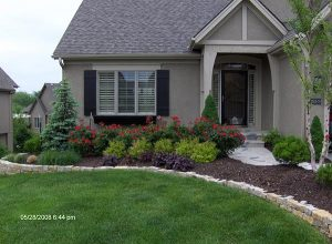 flowers in front of home