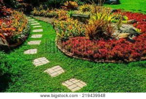 path with blocks and plants