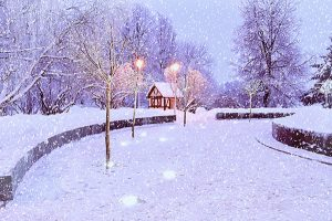 Winter view with snow