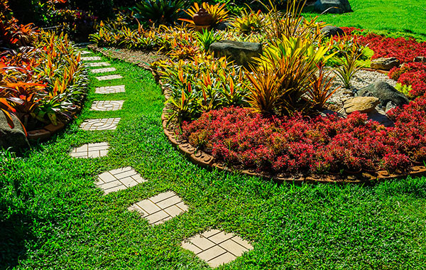 backyard path with flowers and plants