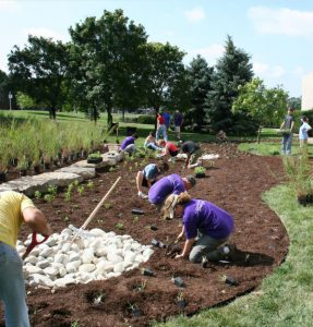 community group landscaping