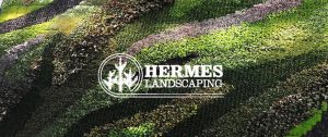 Green wall with Hermes Landscaping logo